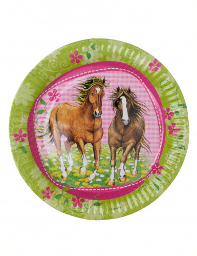 8 paarden bordjes-1