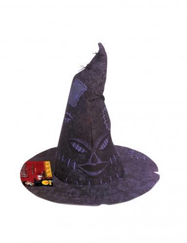 Harry Potter™ sorteerhoed