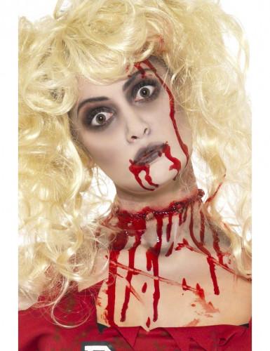 Zombie make-up set voor volwassenen