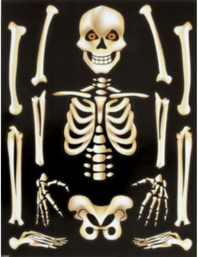 Halloweenraamstickers met skeletten