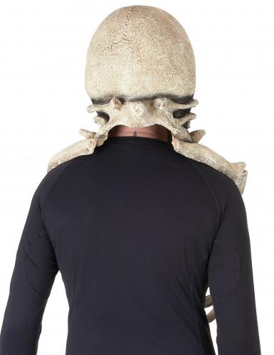 Skelet masker voor volwassenen-1