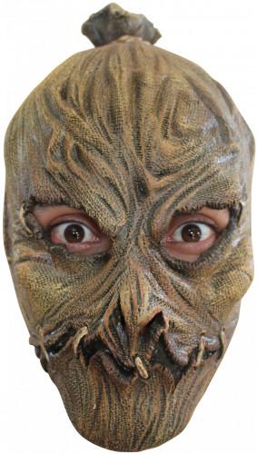 Masker van een vogelverschrikker voor volwassenen Halloween.