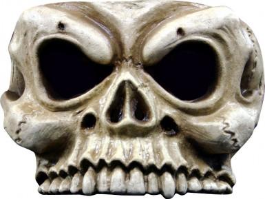 Halfmasker van een skelet voor volwassenen (Halloween)