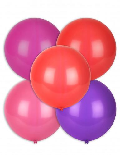 5 dikke ballonnen in verschillende kleuren