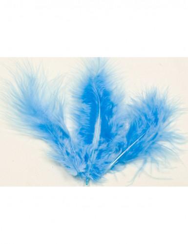 Set 20 blauwe veren
