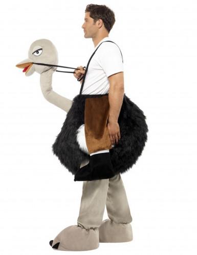 Struisvogel pak voor volwassen-1