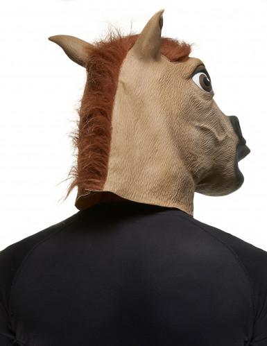 Paarden masker voor volwassen-1
