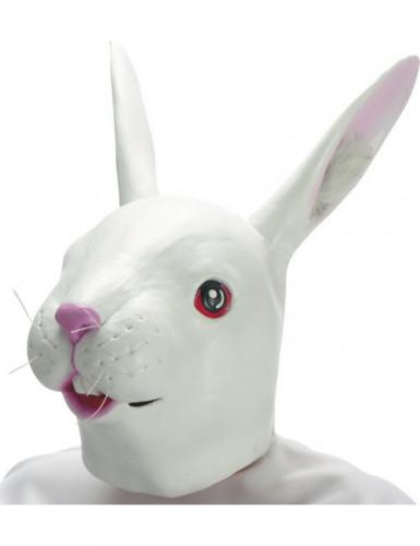 Konijnen latex masker voor volwassenen
