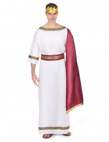 Griekse keizer kostuum voor mannen