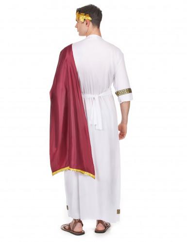Griekse keizer kostuum voor mannen-2