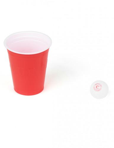 Originele beer pong set-1