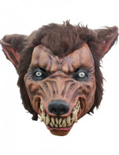 3/4 Weerwolf masker Halloween