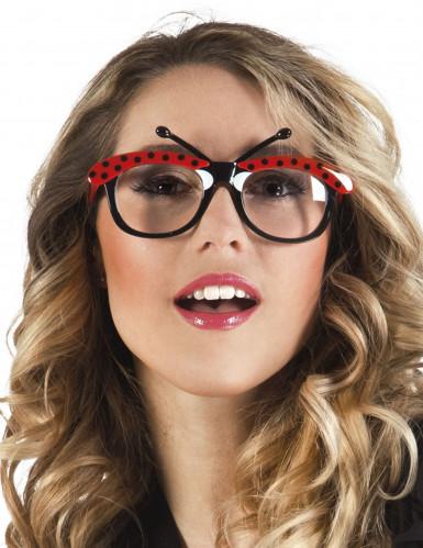 Lieveheersbeestje bril