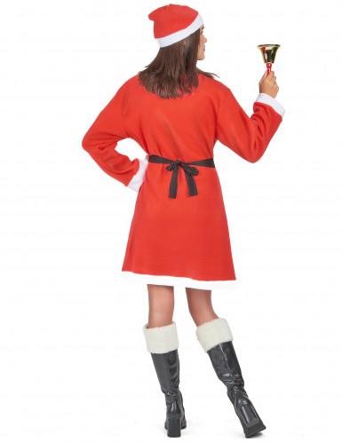 Kerstvrouw jurk voor dames-2