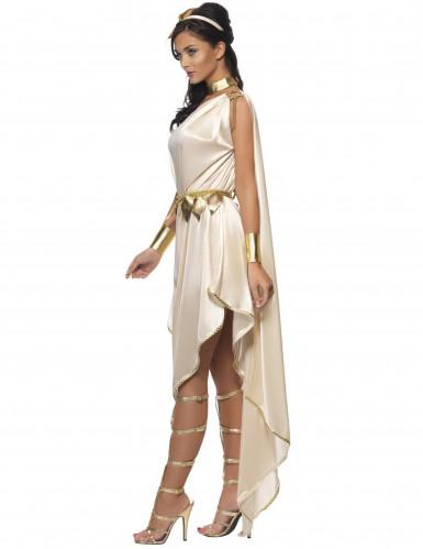 Griekse godinnen kostuum-1