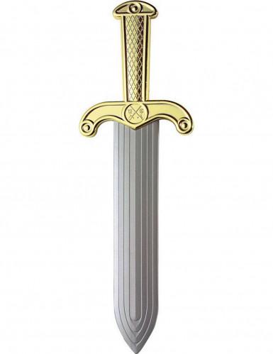 Romeins zwaard 37 cm-1