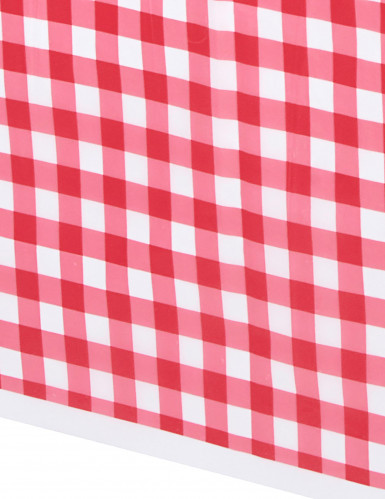 Rood plastic geruit tafelkleed-1