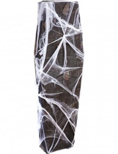 Doodskist met spinnenwebben decoratie Halloween