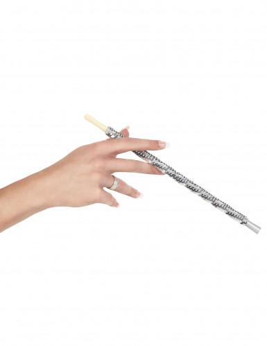 Zilverkleurig sigarettenhouder-1