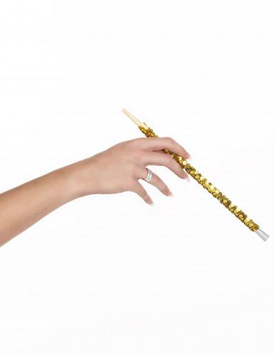 Goudkleurig sigarettenhouder voor volwassenen -1