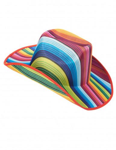 Veelkleurig cowboy hoed voor volwassenen