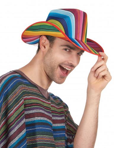 Veelkleurig cowboy hoed voor volwassenen -1
