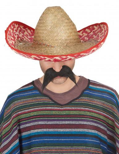 Mexicaanse sombrero hoed voor volwassenen-1