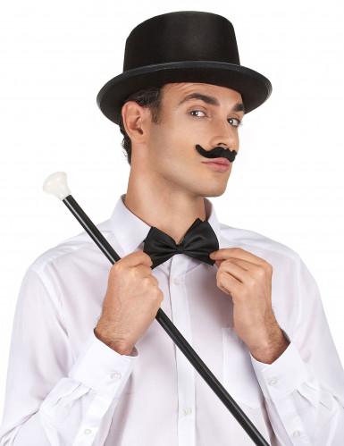 Zwarte hoge hoed voor volwassenen-1