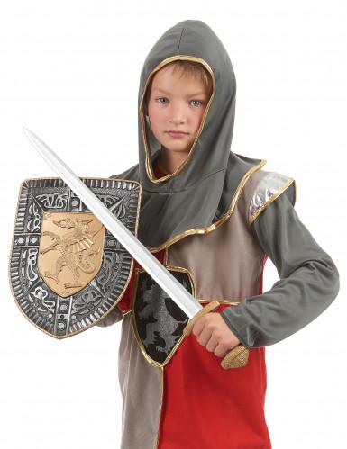 Set zwaard en schild voor kinderen-2