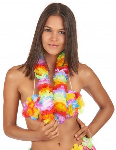 Veelkleurig Hawaï bloemenketting -1