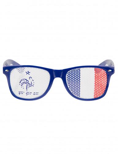 Blauwe Frankrijk FFF™ bril