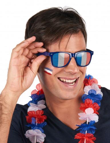 Supporter bril met Franse vlag voor volwassenen-1