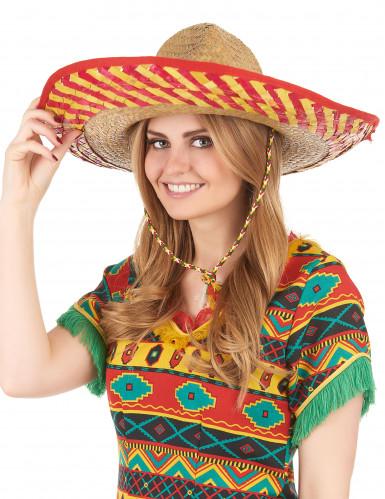 Mexicaanse hoed voor volwassenen-2