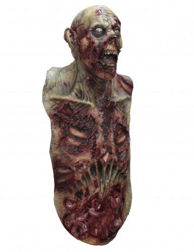 Volledig zombiemasker en -borst voor volwassenen