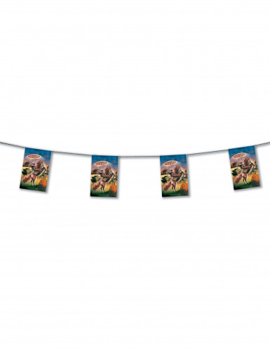 Country vlaggenlijn 4 meter