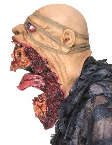 Monsterlijk zombie masker voor volwassenen-4