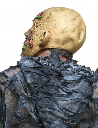 Rottende zombie met maden masker voor volwassenen-1