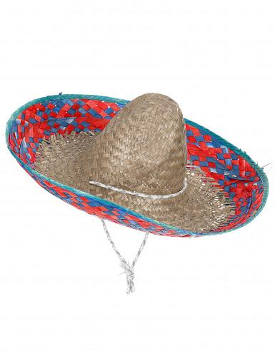 Sombrero met roze en blauwe rand voor volwassenen
