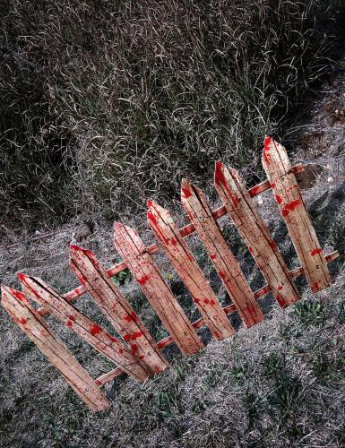 2 bloederige hek decoraties-1