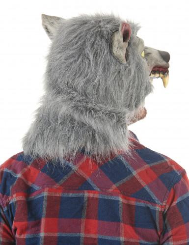Latex weerwolf masker voor volwassenen-1