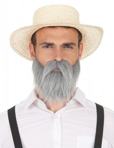 Grijze snor en baard voor volwassenen