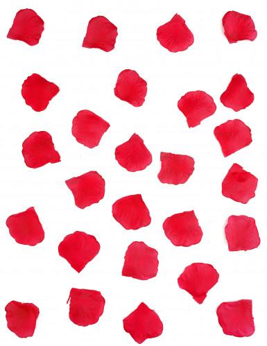 150 rode bloemblaadjes-1