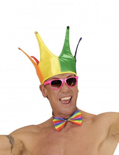 Kleurrijke narren hoed voor volwassenen-1