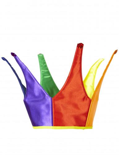 Kleurrijke narren hoed voor volwassenen-2