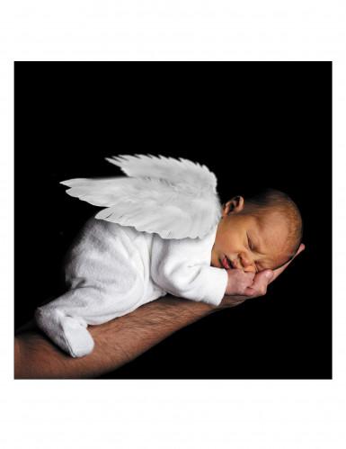 Witte engelen vleugels voor volwassenen of baby-2