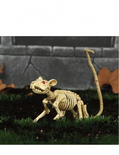 Skelet rat decoratie