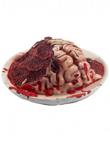Hersenen op bord decoratie