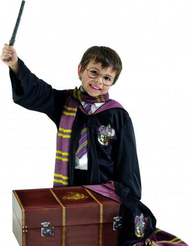 Verkleed kist Harry Potter™ voor kinderen