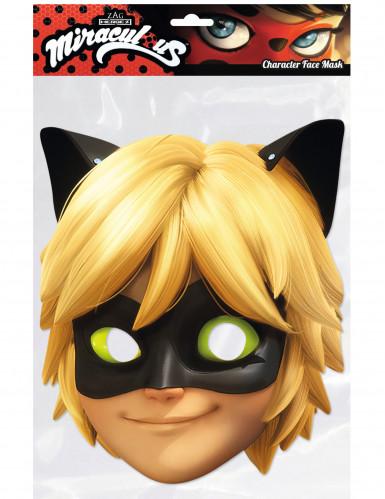 Kartonnen masker Cat Noir™ Miraculous Ladybug™