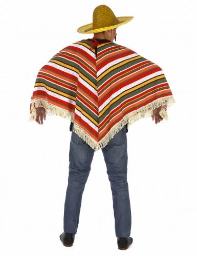 Mexicaanse poncho voor volwassenen-2